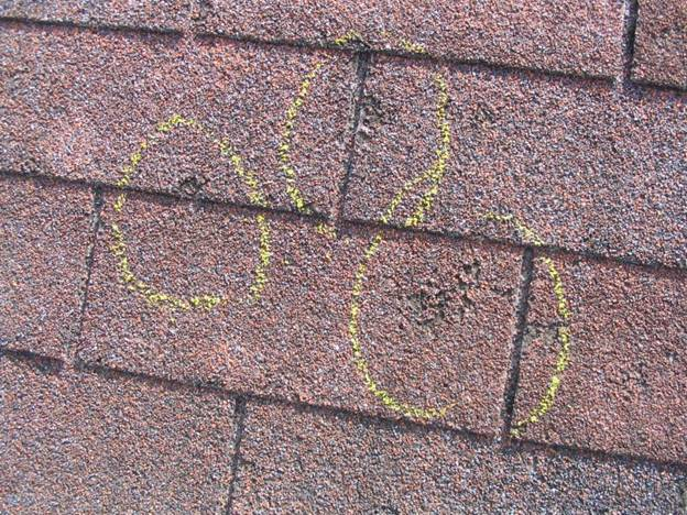 Do You Need A New Roof Quality Roofer
